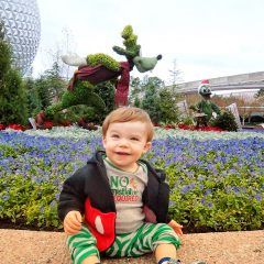 Visiting Walt Disney World during cold weather; what you need to know