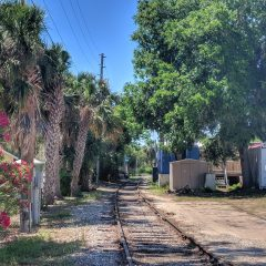 How to spend a day in Mount Dora, Florida