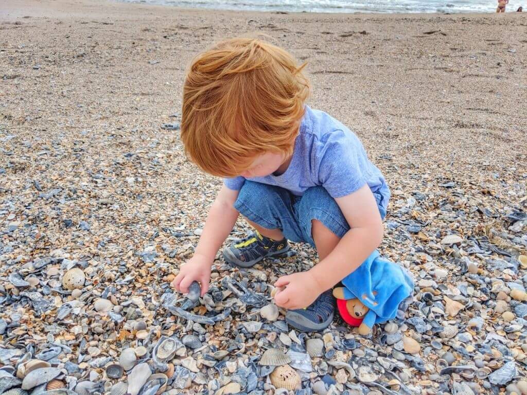 what to do in amelia island with kids