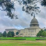 A self guided walking tour of Washington DC with kids