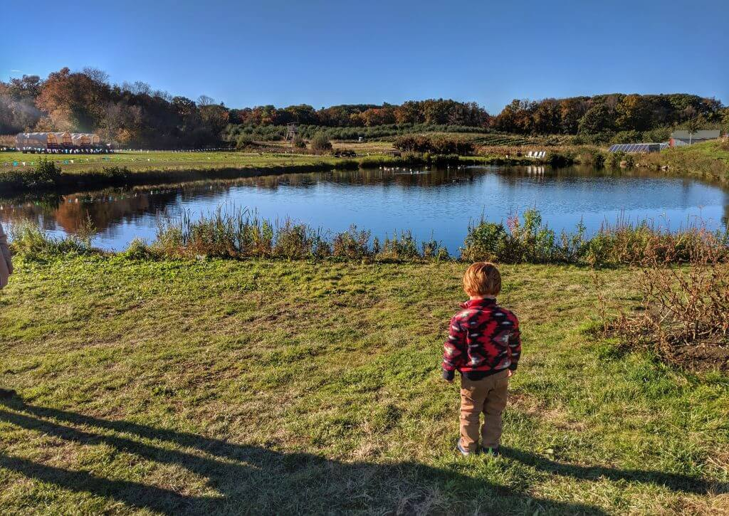 New England Fall Foliage Road Trip