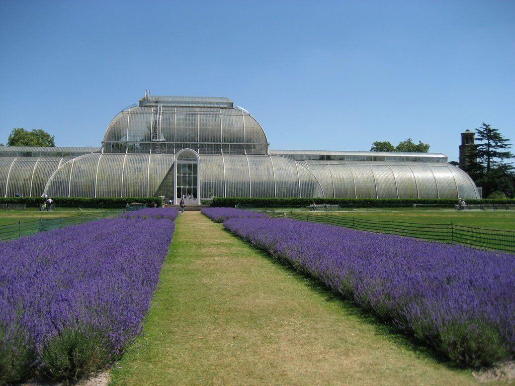 Layover in London Kew Gardens