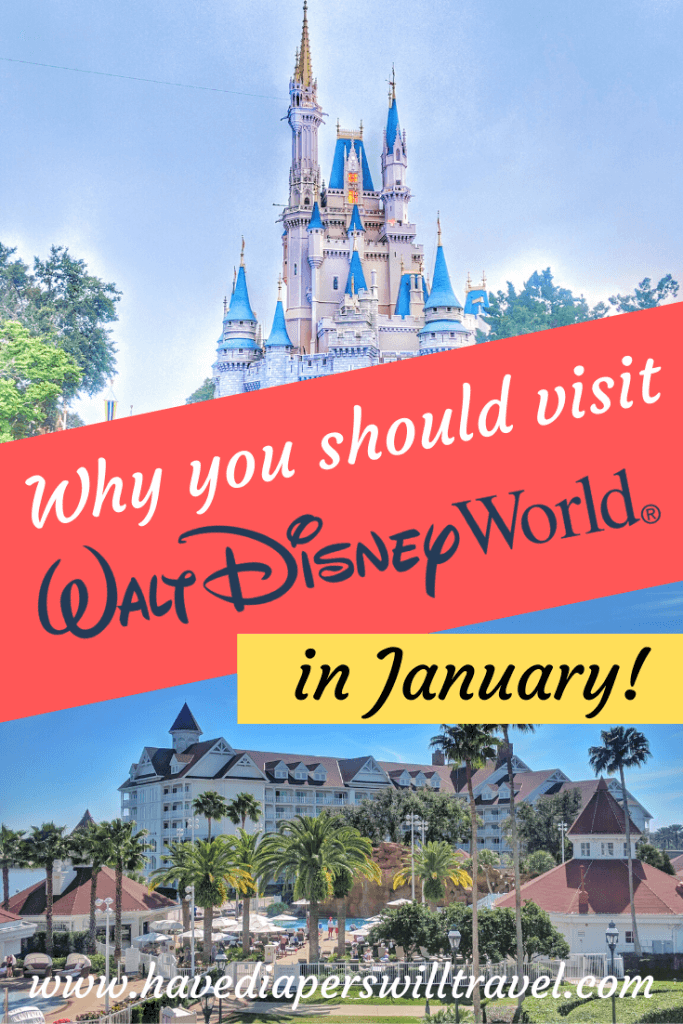 Disney World in January