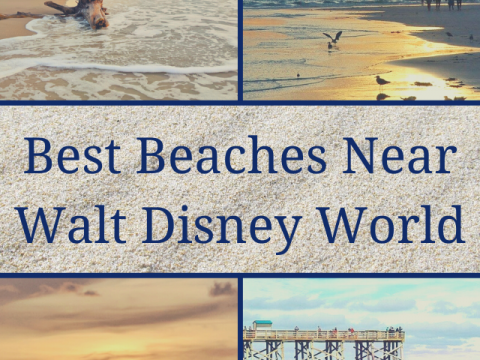 best beaches near disney world